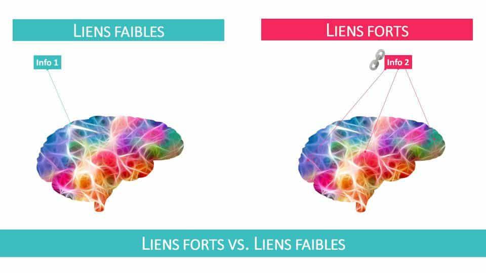 Mémorisation : l'étape d'encodage de l'information dans votre cerveau est cruciale!