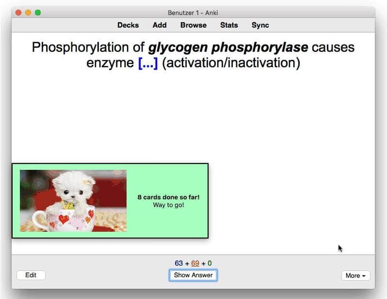 Puppy Reinforcement : une extension Anki qui affiche des messages encourageants avec de charmants petits chiots